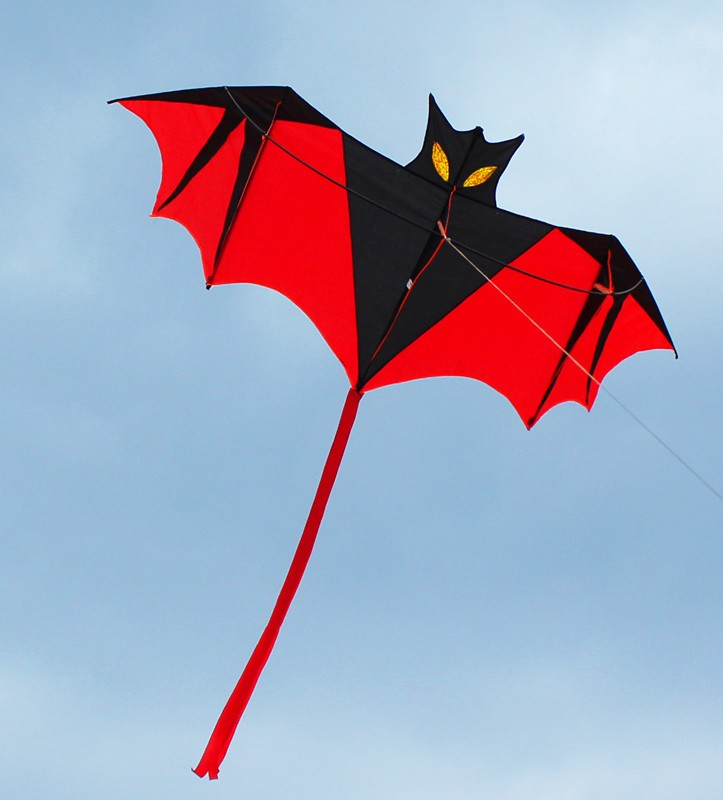 free-shipping-high-quality-children-bat-kite-10pcs-lot-with-handle-line-outdoor-flying-toy-nylon.jpg